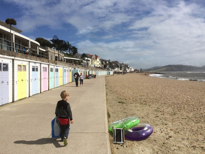 Am Strand in Lyme Regis