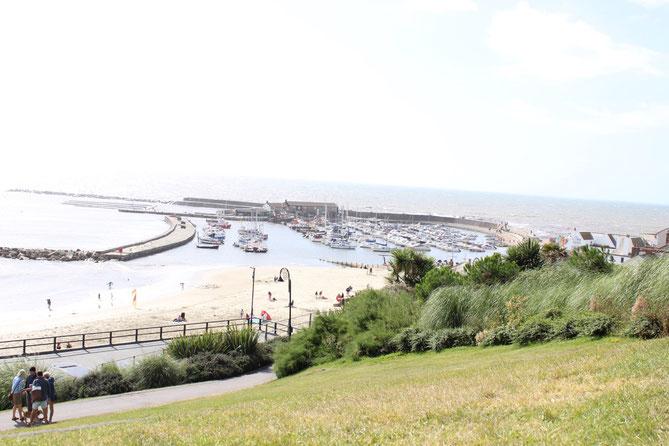 Blick über den Hafen von Lyme Regis