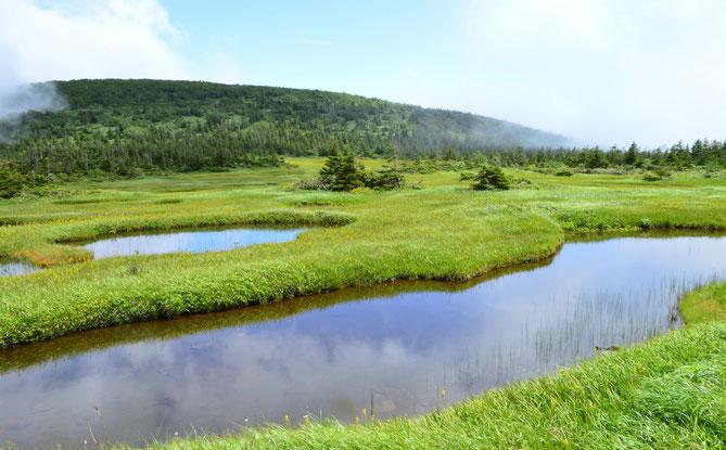 久々の千沼ヶ原湿原。池塘と三角山。やはり不思議な景色だ。