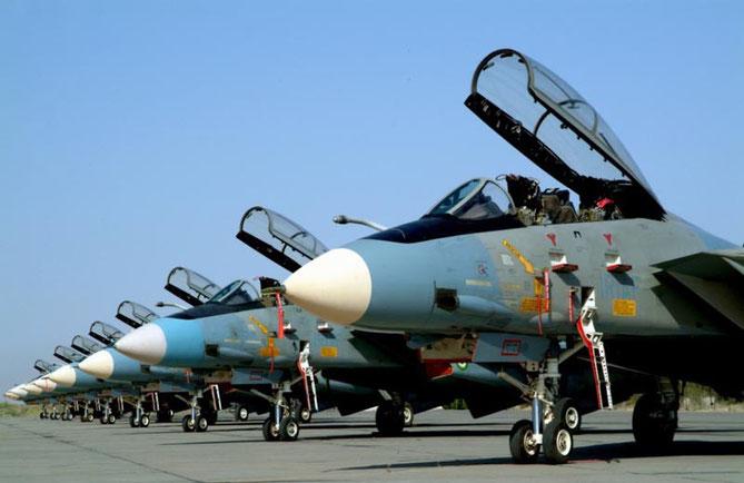 F-14 con la nuova livrea aria-aria adottata a partire dagli anni '90