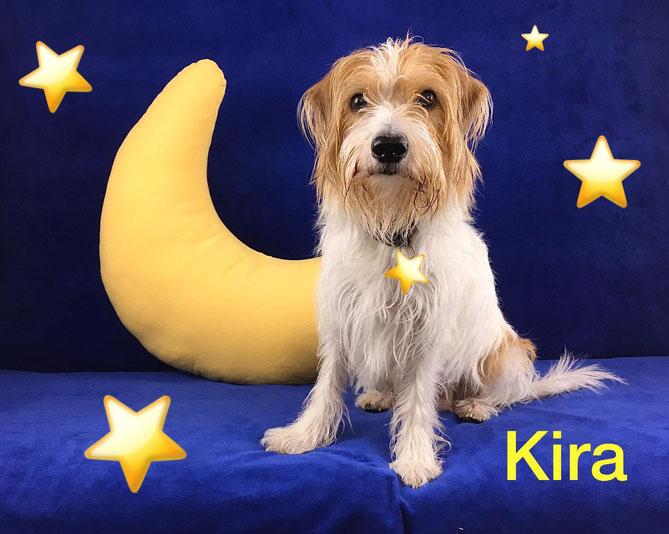 Unsere Kira ist eine gute Mama...