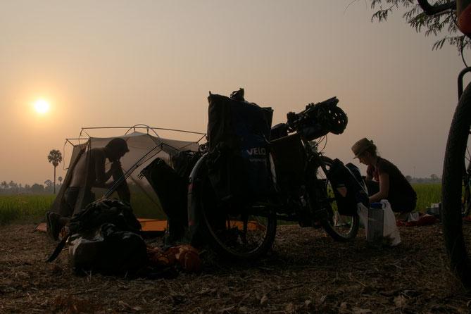 Campingplatz bei einem Reisfeld