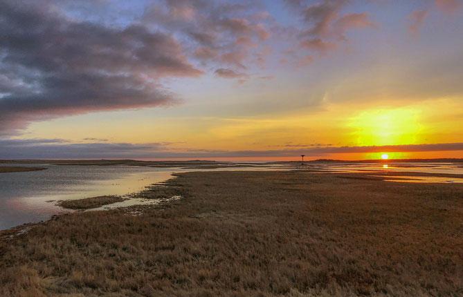 Morning Sunrise,East Sandwich
