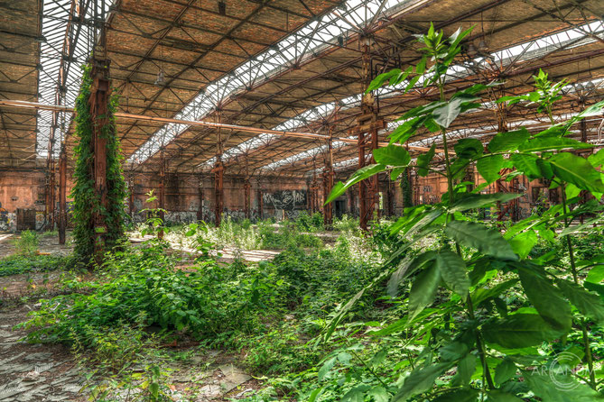 ABandoned Cable Production Factory in Berlin | Kabelwerk Köpenick