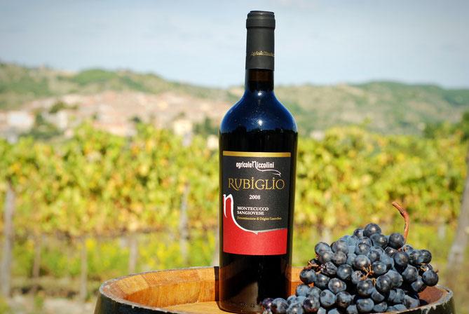 Monte Amiata, Toscana, Italia. Montecucco, Itinerari di vino. Blog Etesiaca