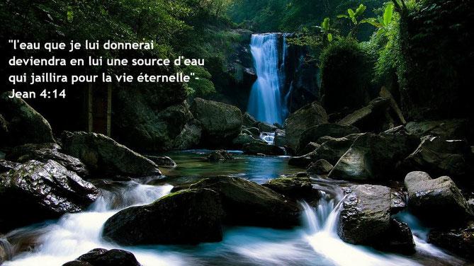 Jésus nous conduira vers des sources d'eau de la vie. n effet, l'Agneau qui est au milieu du trône prendra soin d'eux et les conduira aux sources des eaux de la vie, et Dieu essuiera toute larme de leurs yeux.