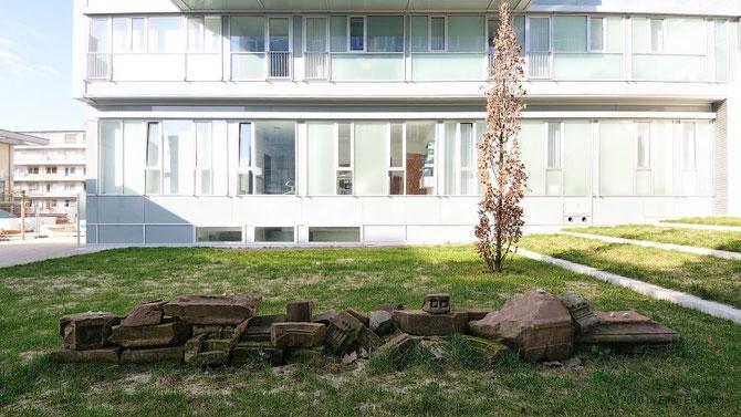 Garten der Erinnerung am Erinnerungsort Liberale Synagoge, Foto: Ellen Eckhardt (FLS)
