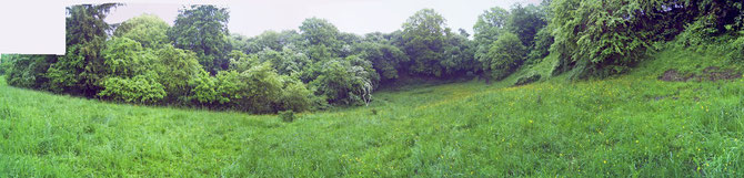 Blick vom Aussichtspunkt des Rundwegs bei der Tafel des geologischen Lehrpfades nach Ost, in Richtung Kalkkuhlen