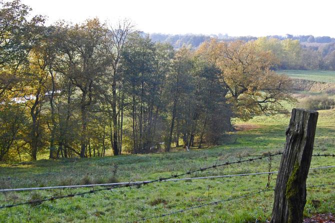 Das Trave-Tal bei Klein Gladebrügge