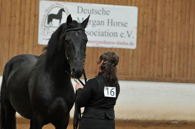 Donny bei der Jubiläumsshow 25 Jahre DMHA e.V. am 16.8.2014 in Thüringen