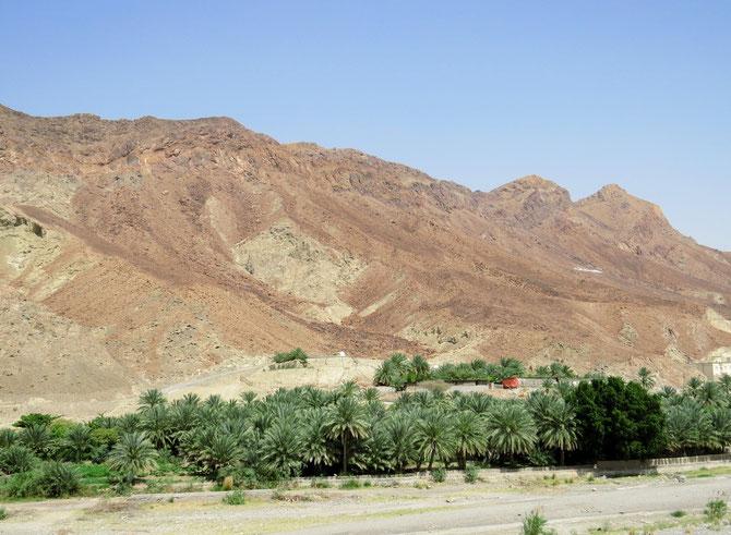 Wadi folgt auf Wadi