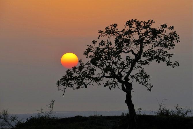 In den Mondbergen vom Oman