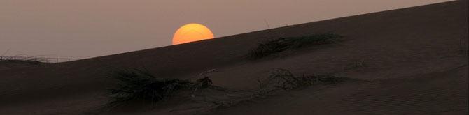 Wüstengeflüster