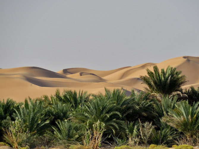 Sandspielplatz mit grünem Vorgarten