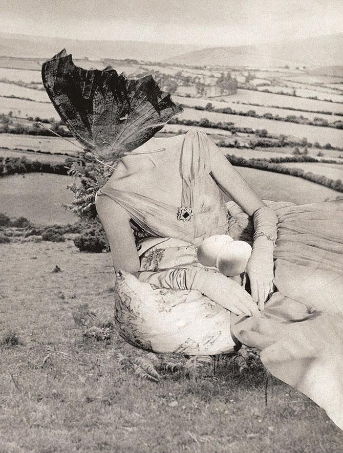 「孵化」(1955年)