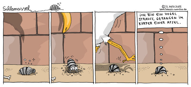 Comicstrip über Asseln, Vogel Strauß und Verstecken