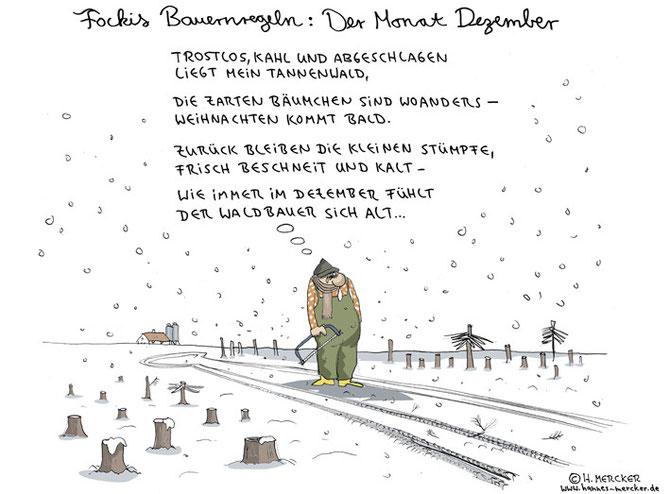 "Bildgeschichte ""Fockis Bauernregeln - Dezember"""