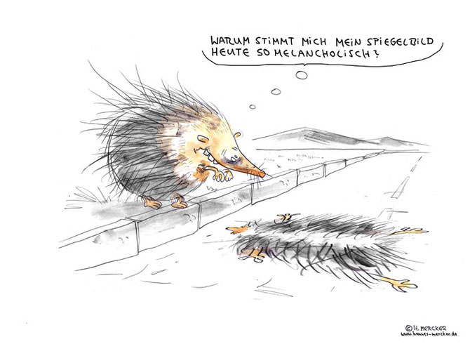 """Cartoon """"Spiegelbild"""""""