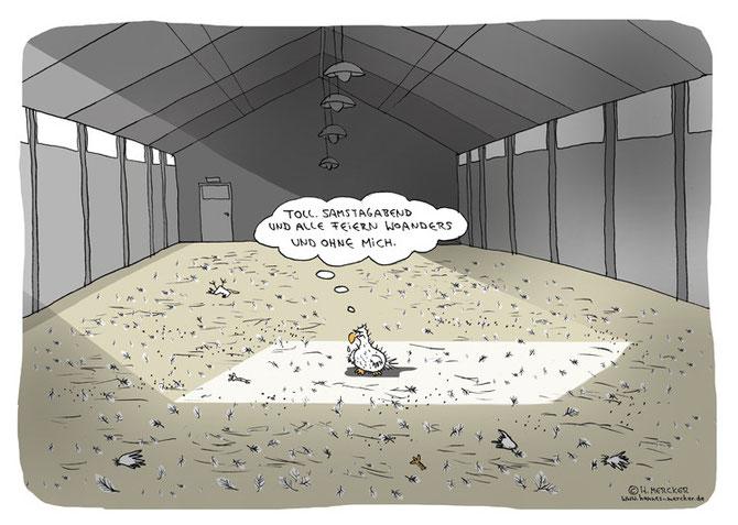 letztes Huhn im Massentierstall