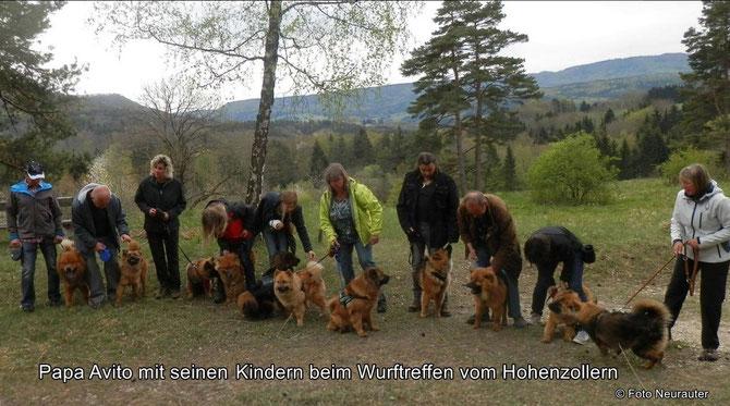 Wurftreffen des C-Wurfes vom Hohenzollern am 25. April 2015
