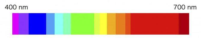 可視光のスペクトルム