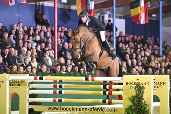 Famous young stallion Lord Pezi junior shines for Boeckmann stallions. (Photo: Kiki Beelitz)