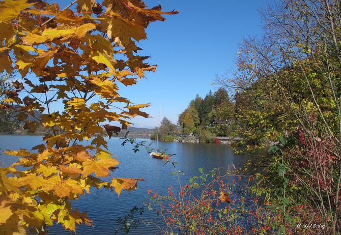 """""""Goldener Herbst"""" am Schliersee"""