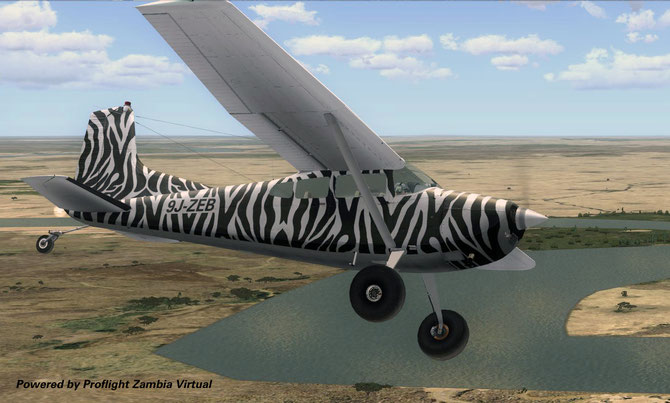 C185 fictional Zebra livery