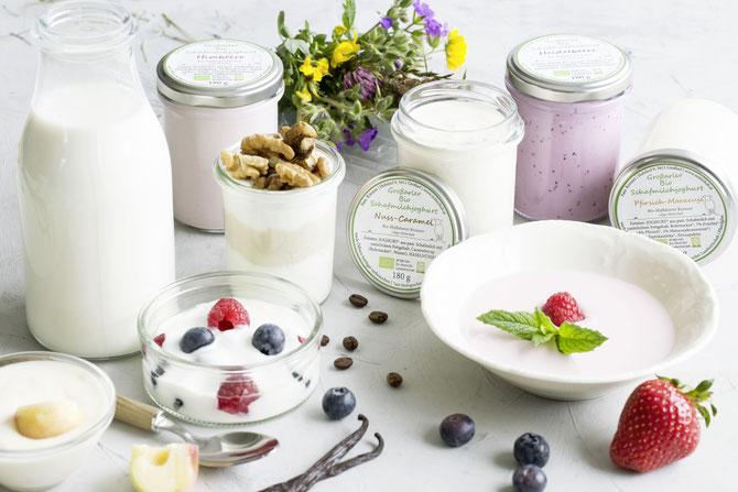 Verschiedene Joghurts aus Schafmilch
