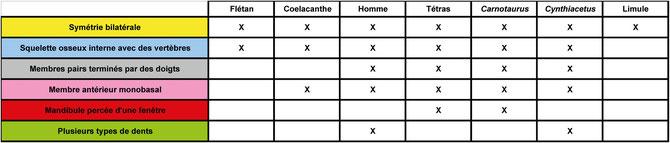 Matrice de caractères pour différentes espèces. Sources : http://edu.mnhn.fr/mod/page/view.php?id=3065