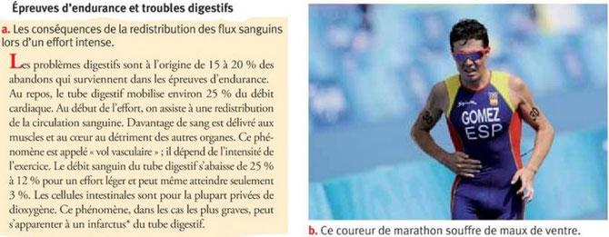 """""""Vol vasculaire"""" au cours d'un effort d'endurance. Source : Bordas 2013 p203."""