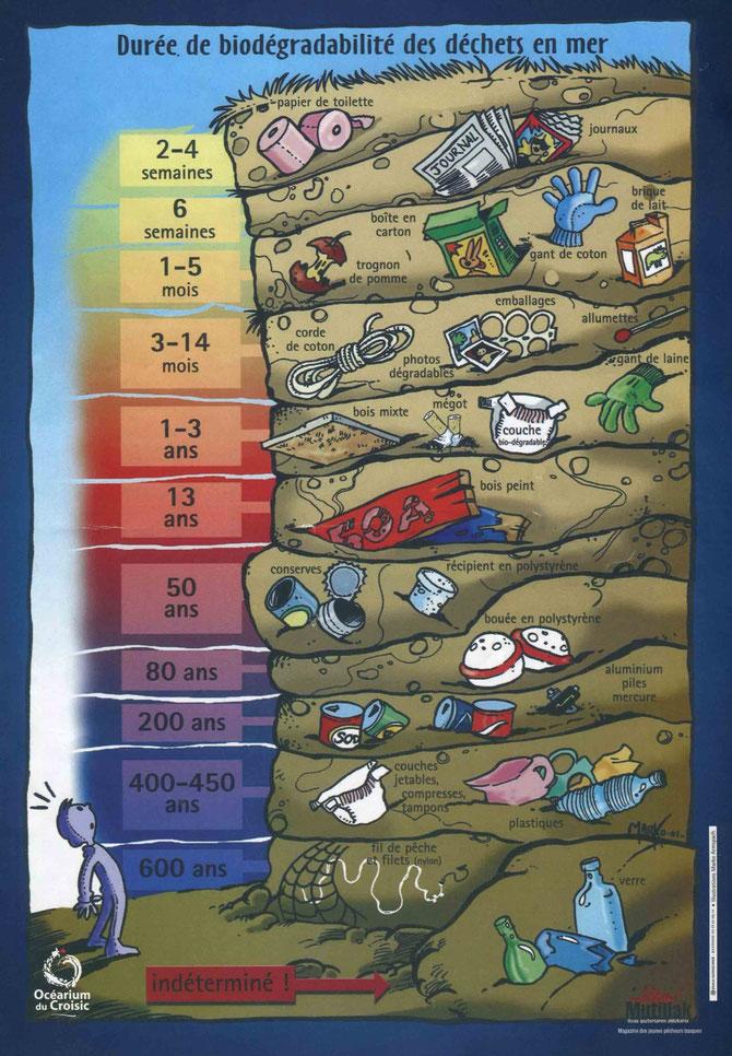 Affiche issue de l'aquarium du Croisic en Bretagne. Source: http://www.ocearium-croisic.fr/