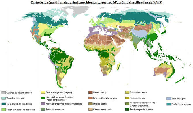 Grands biomes terrestres.
