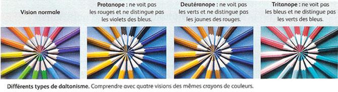 Les différents types de daltonisme. SOurce : SVT; Nathan 2010 p42.
