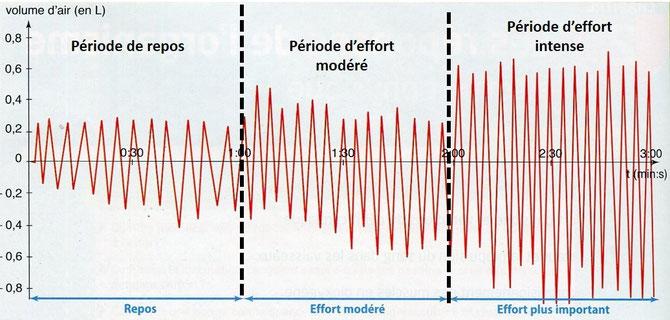 Variation du débit ventilatoire entre le repos et l'effort physique. Source : modifié de BELIN SVT p220.