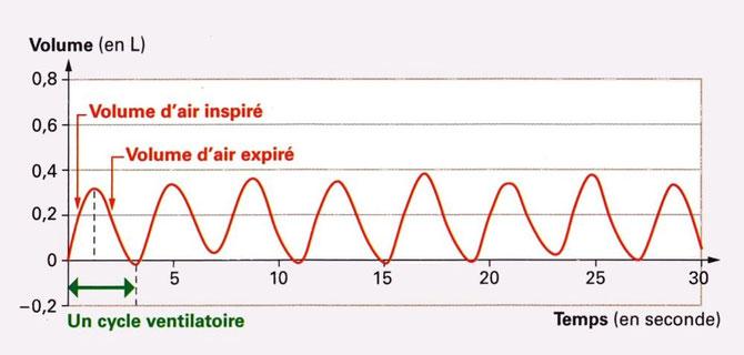 mesures du volume d'air inspiré et expiré lors d'un effort physique modéré. Sources: http://raymond.rodriguez1.free.fr/Textes/231.htm