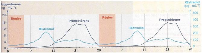 Variations des hormones ovariennes et les règles chez une femme qui prend la pilule. Source: Hatier Terminale S page 250, édition 2005)