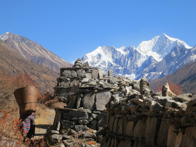 Murs manis et le Kangchengpo après Langtang