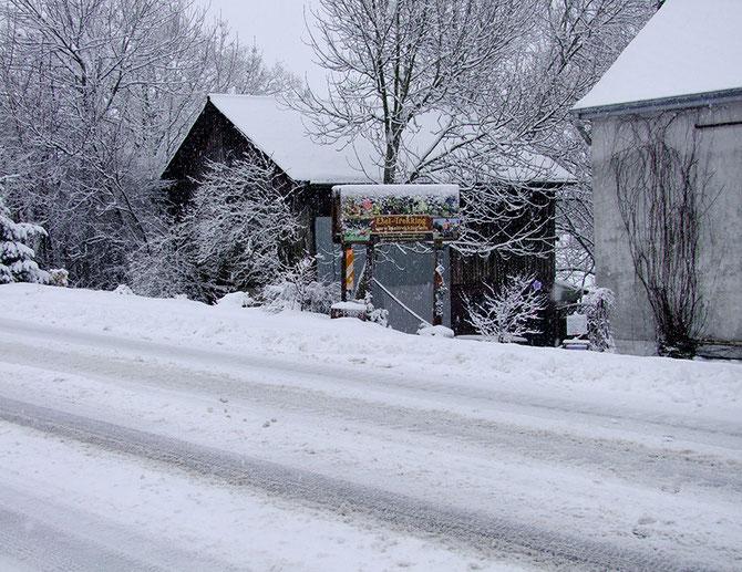 Winter 2015 - vor dem Haus