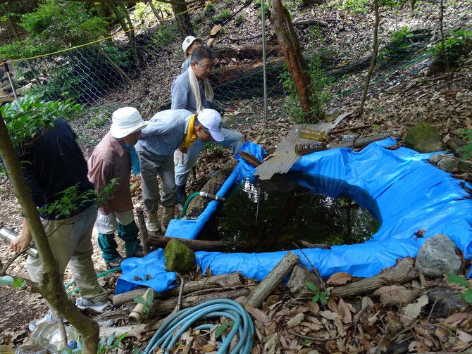たて山池(人工池)の中を熱心に覗いています。よーく見るとオタマジャクシが息継ぎに上がってきます。