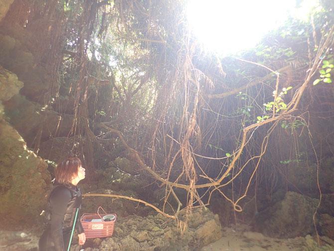 沖縄 宮古島 伊良部島 下地島 ピクニック 青の洞窟 三角点 伊良部大橋 クマノミ ニモ SUP スタンドアップパドル 洞窟 洞窟めぐり