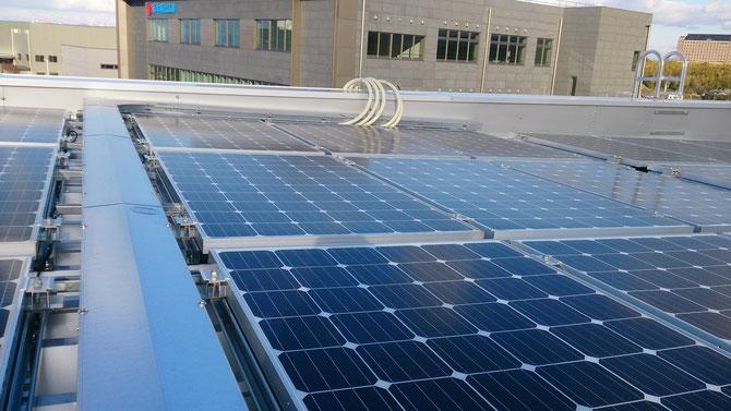 屋上でのパネル配線工事です。フレキ使用でパワーコンへの配線です。