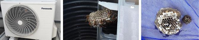 蜂の巣駆除 金沢市