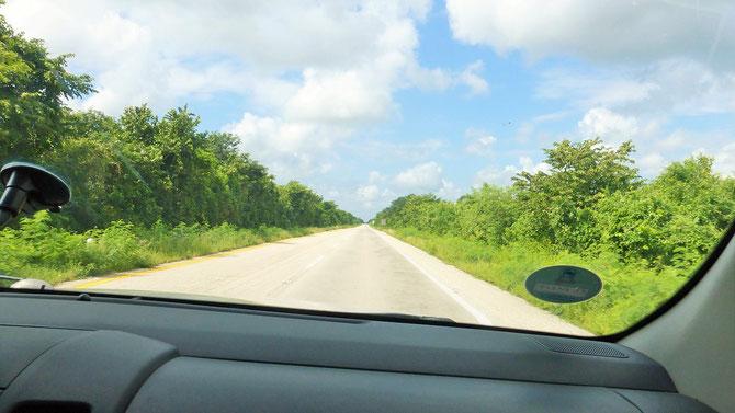 Davon träumt man in Europa. Die Mautautobahn (hier die beiden Spuren Richtung Merida) von Cancun nach Merida. Die Gefahr liegt in den fehlenden Kurven und im immer gleich aussehenden Urwald links und rechts der Piste.