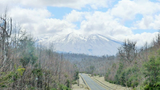 Die Vulkankette Puyehue-Caulle im NP Puyehue machte im Juni 2011 weltweit von sich reden, als sie nach 50 jahren erstmals wieder ausbrach und zwar bis Anfang 2013. Die Asche fiel meterhoch und vernichtete, bis heute sichtbar, riesige Waldgebiete.