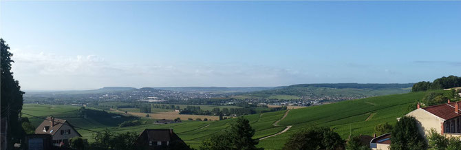View of the champagne countryside