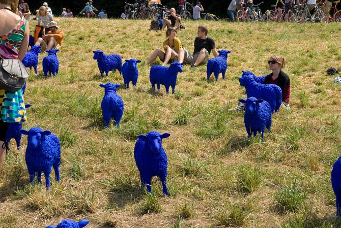 Bertamaria Reetz & Rainer Bonk, blaue Schafe an der A40, 2010