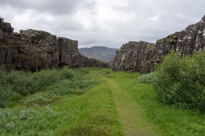 Grabenbruch zwischen der Amerikanischen und der Erasischen Platte im Thingvellir-Nationalpark