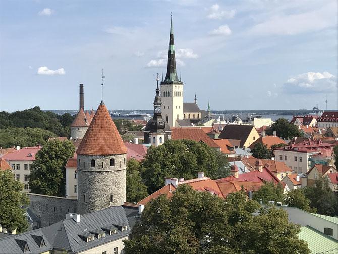Tallinn: Blick vom Domberg auf die Olaikirche