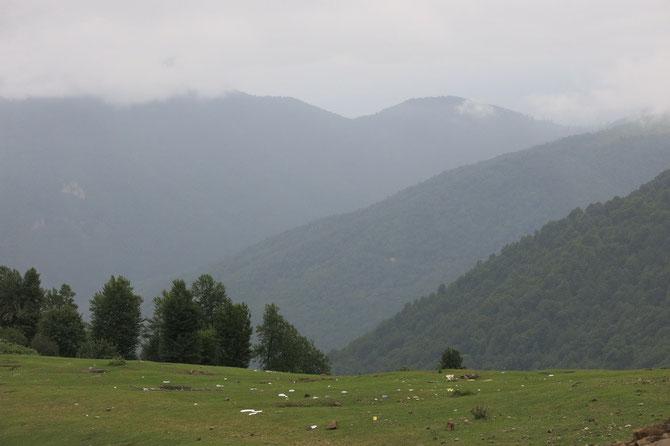 Auch im Nebel schön... das Kuhha-ye Tales-Gebirge
